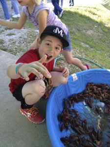 Apparently, this crawfish has a different idea about who should be eaten.
